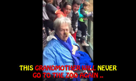 This grandmother will never go to the zoo again ..